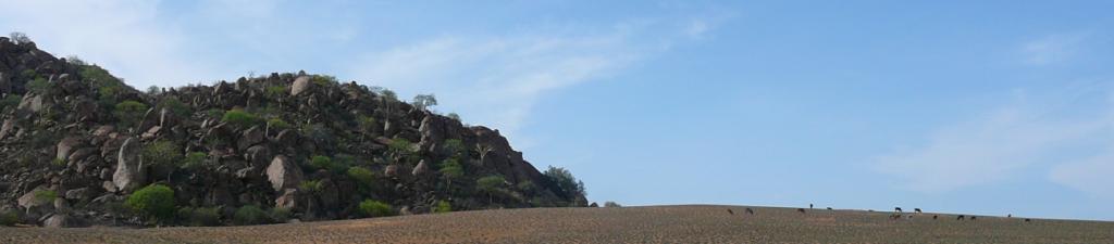 Pastoreio no Mwhvú