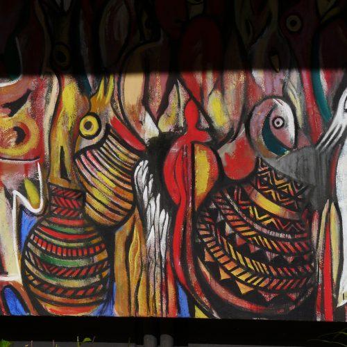 olhares-de-africa-2